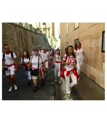 Guided visit 'Welcome to Pamplona Tour'